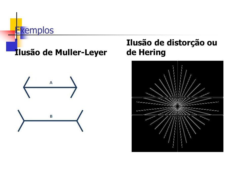 Exemplos Ilusão de Muller-Leyer Ilusão de distorção ou de Hering