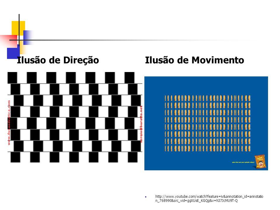Ilusão de Direção Ilusão de Movimento