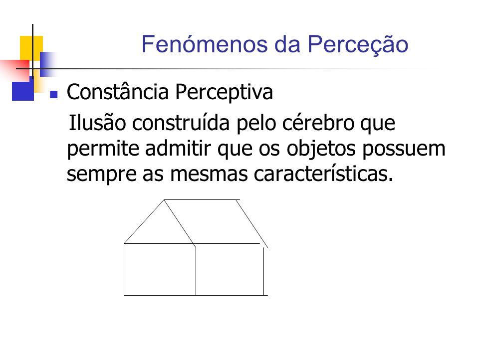 Fenómenos da Perceção Constância Perceptiva