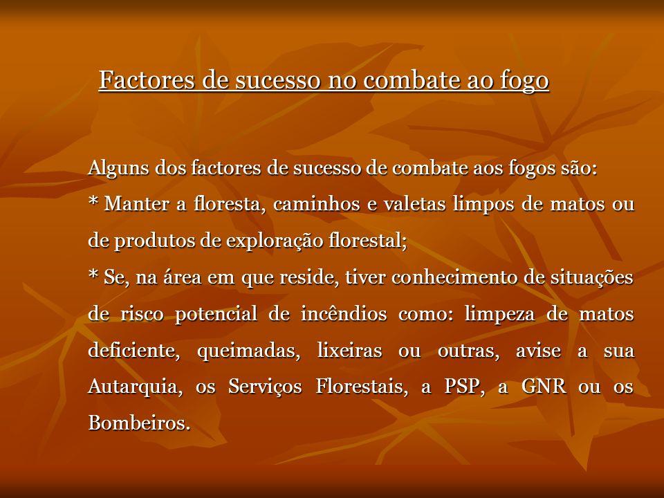Factores de sucesso no combate ao fogo