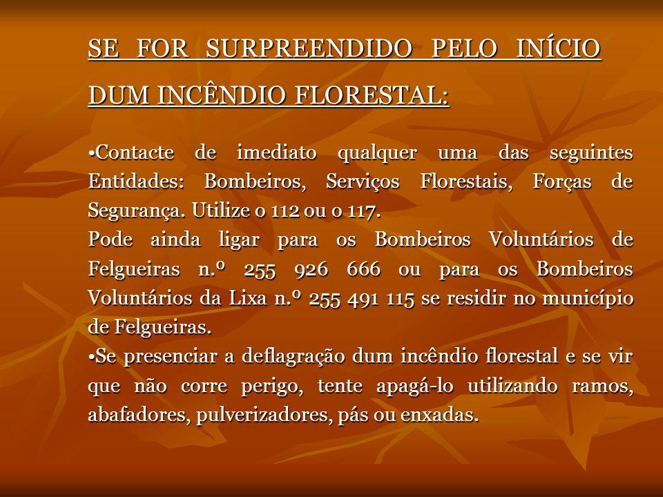 SE FOR SURPREENDIDO PELO INÍCIO DUM INCÊNDIO FLORESTAL: