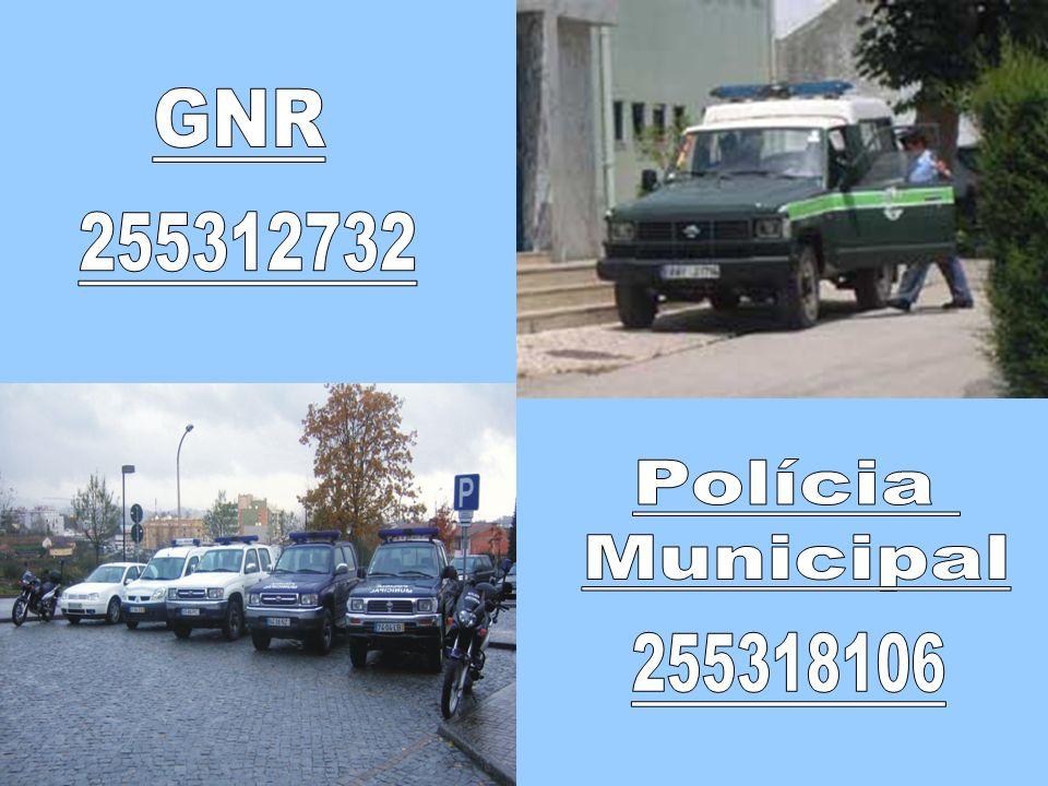 GNR 255312732 Polícia Municipal 255318106
