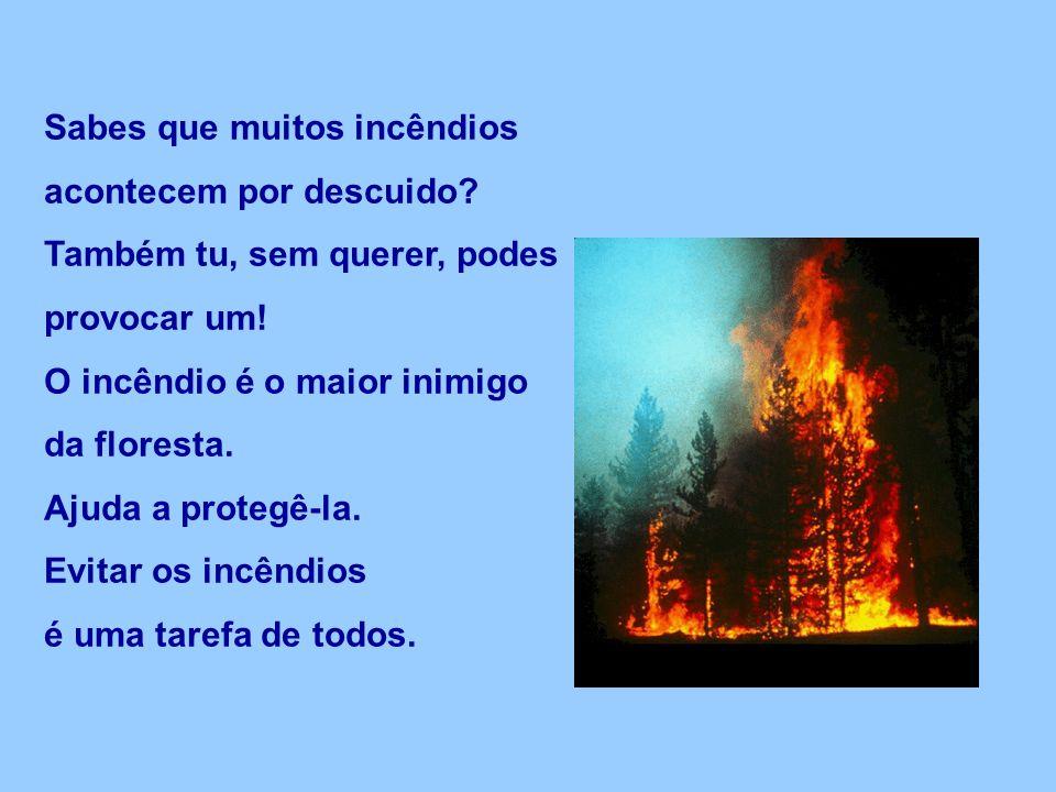 Sabes que muitos incêndios