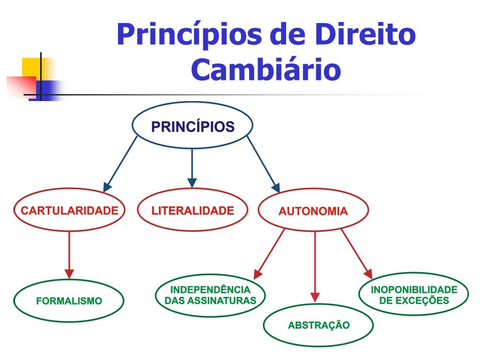 Princípios de Direito Cambiário