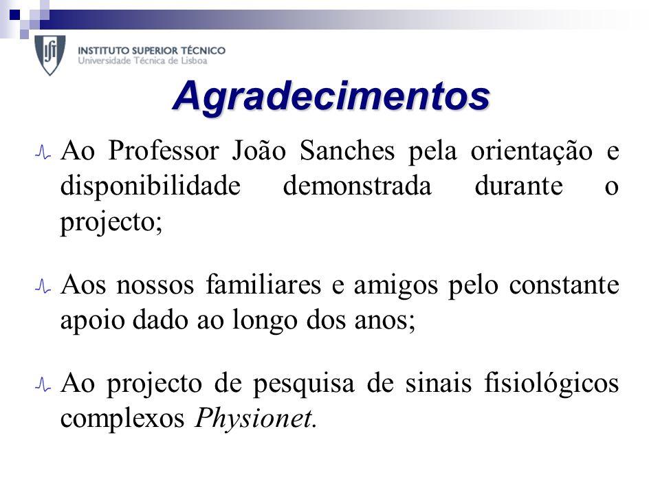Agradecimentos Ao Professor João Sanches pela orientação e disponibilidade demonstrada durante o projecto;