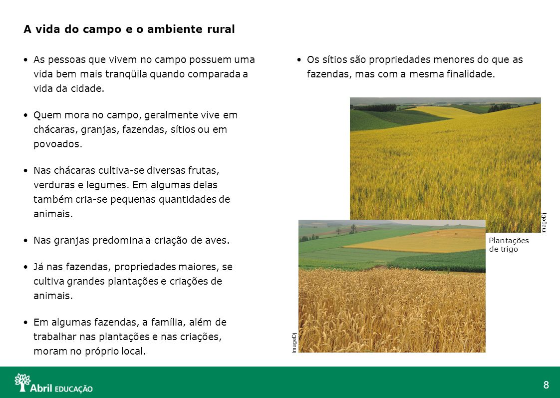 A vida do campo e o ambiente rural