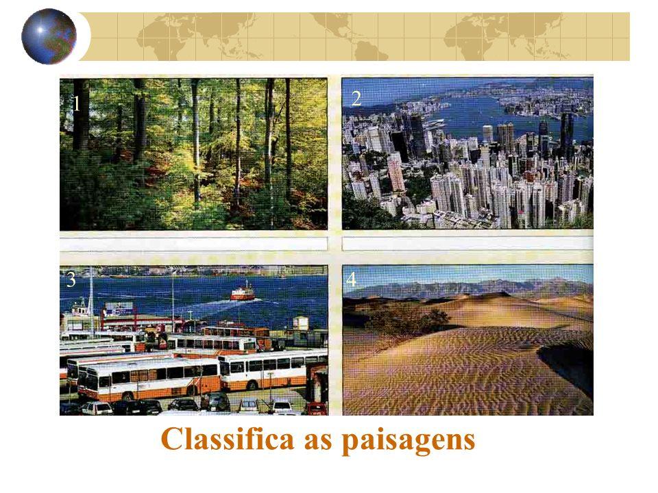 Classifica as paisagens