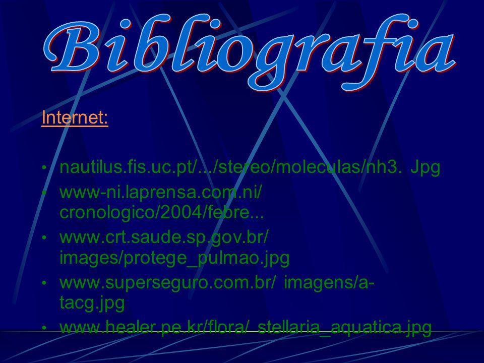 Bibliografia Internet:
