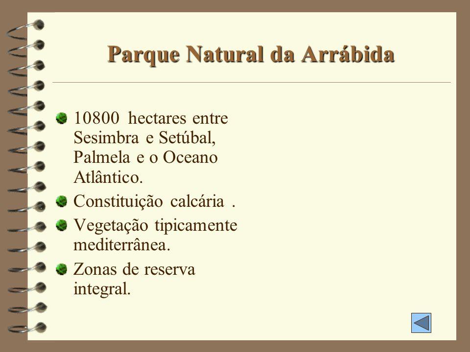 Parque Natural da Arrábida