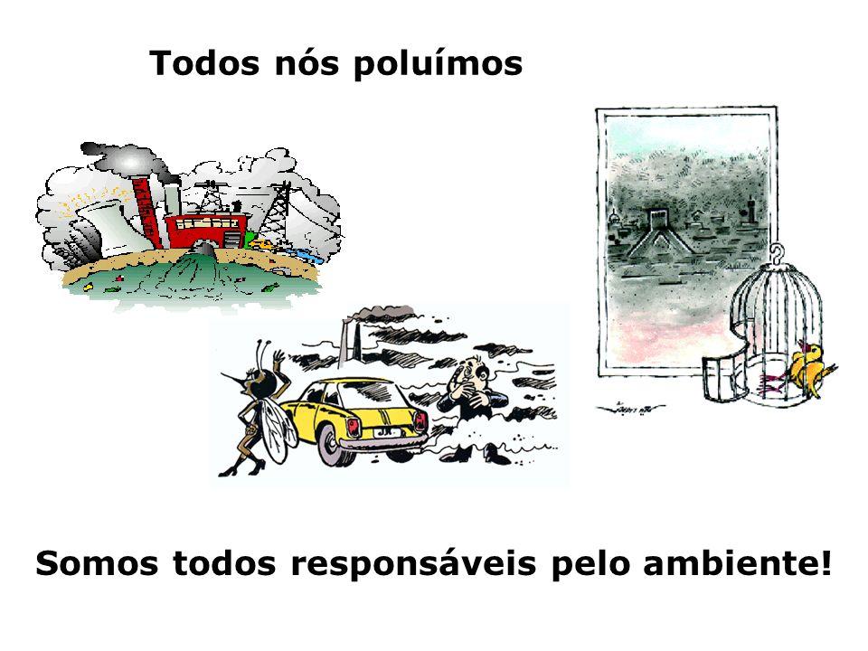 Somos todos responsáveis pelo ambiente!