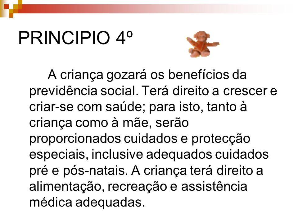 PRINCIPIO 4º