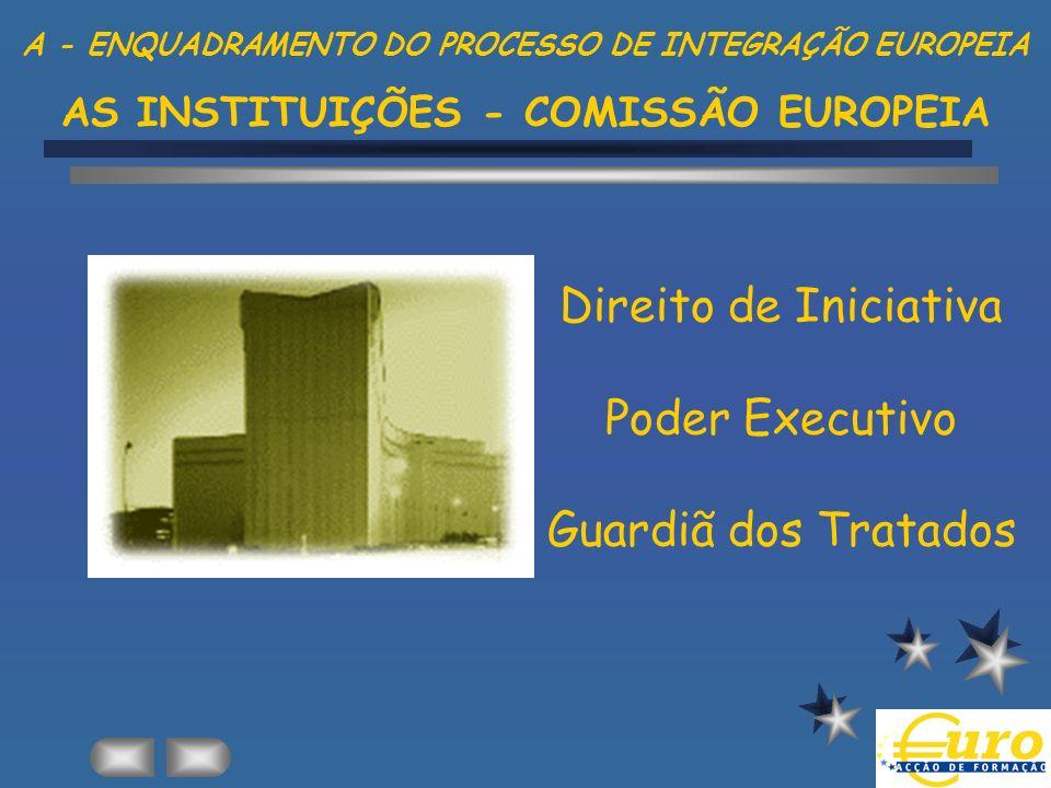 Direito de Iniciativa Poder Executivo Guardiã dos Tratados
