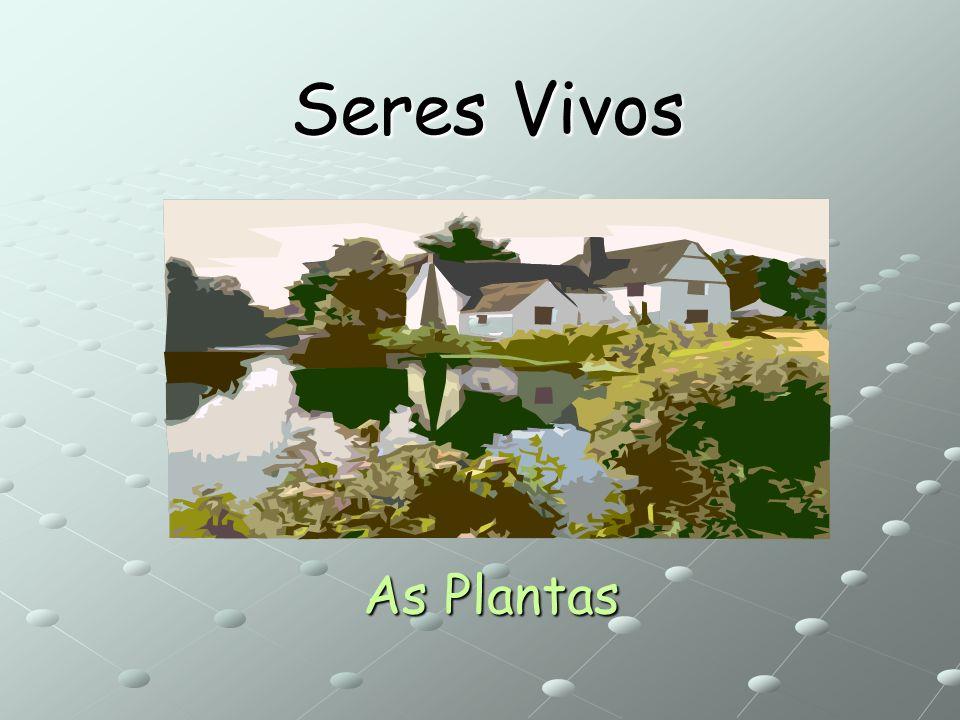 Seres Vivos As Plantas
