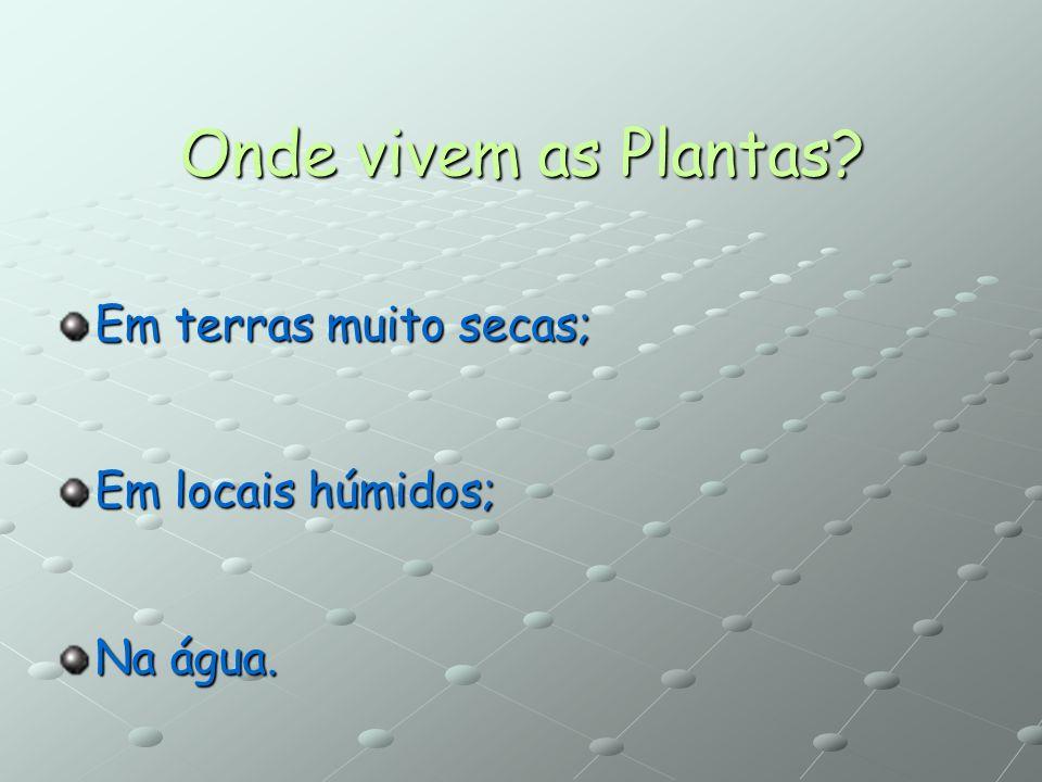 Onde vivem as Plantas Em terras muito secas; Em locais húmidos;