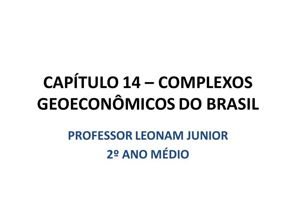 CAPÍTULO 14 – COMPLEXOS GEOECONÔMICOS DO BRASIL