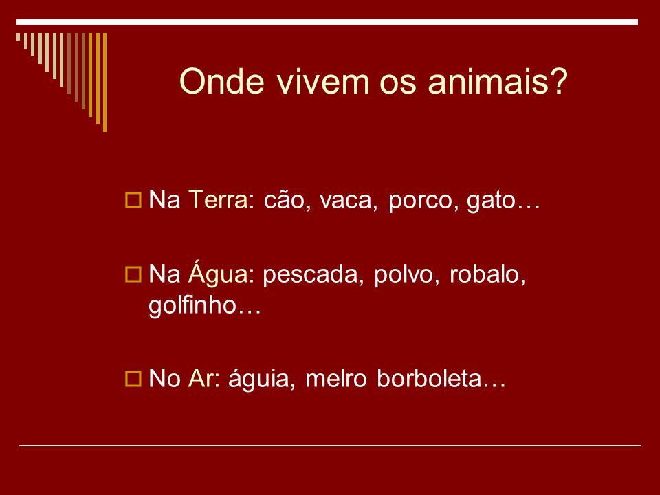 Onde vivem os animais Na Terra: cão, vaca, porco, gato…