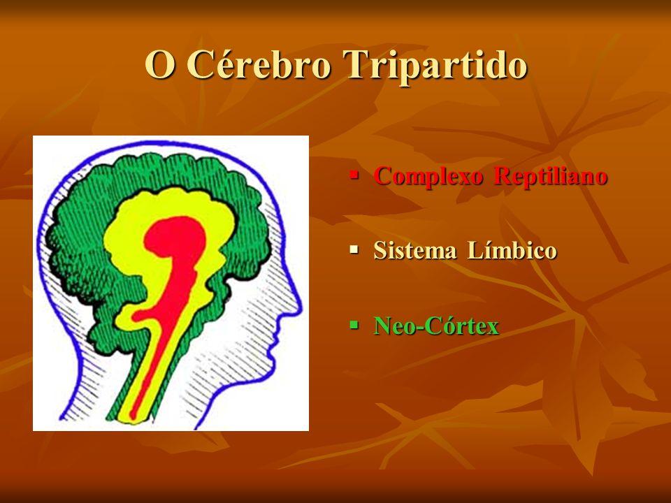 O Cérebro Tripartido Complexo Reptiliano Sistema Límbico Neo-Córtex