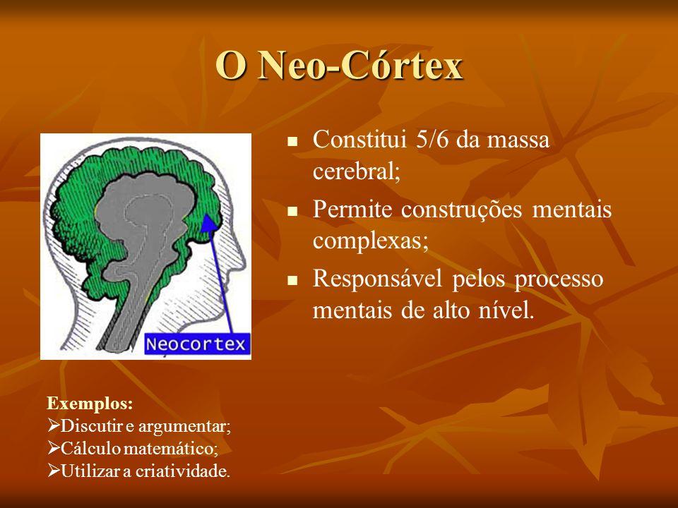 O Neo-Córtex Constitui 5/6 da massa cerebral;