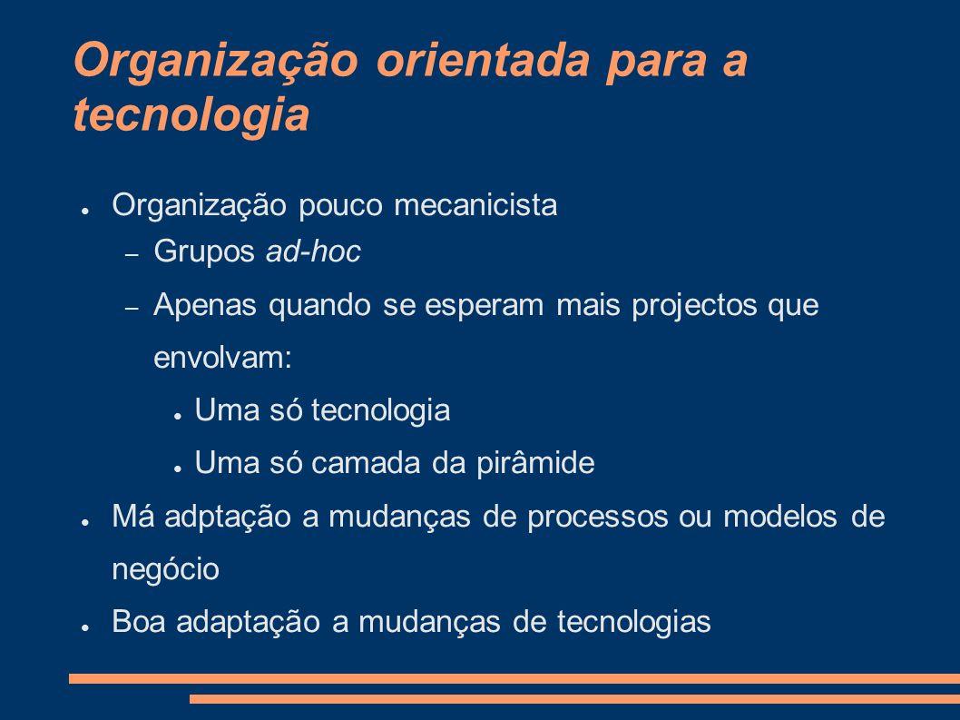 Organização orientada para a tecnologia