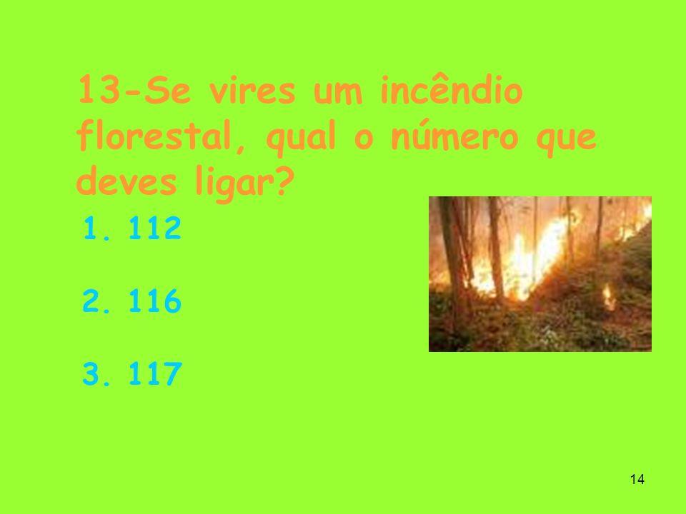 13-Se vires um incêndio florestal, qual o número que deves ligar