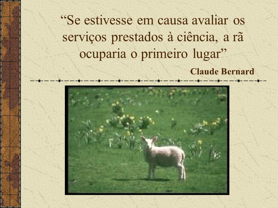 Se estivesse em causa avaliar os serviços prestados à ciência, a rã ocuparia o primeiro lugar Claude Bernard