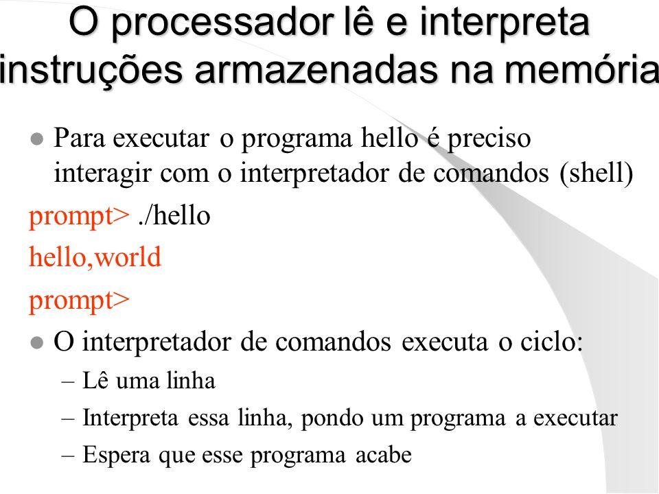 O processador lê e interpreta instruções armazenadas na memória