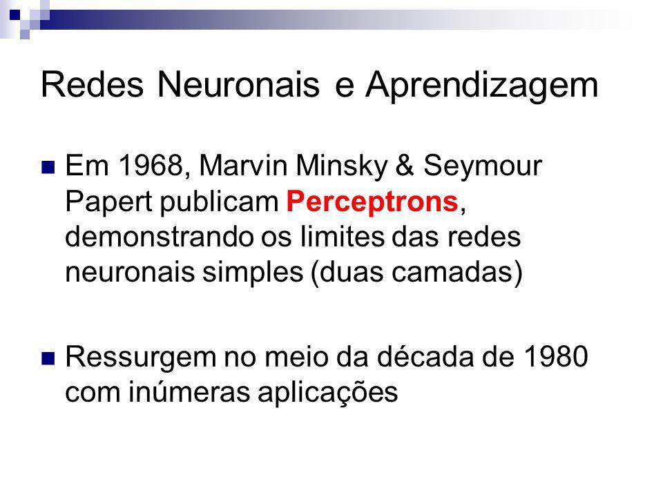 Redes Neuronais e Aprendizagem