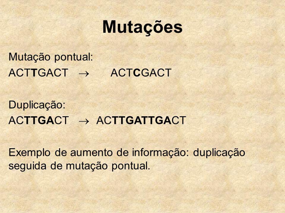 Mutações Mutação pontual: ACTTGACT  ACTCGACT Duplicação: