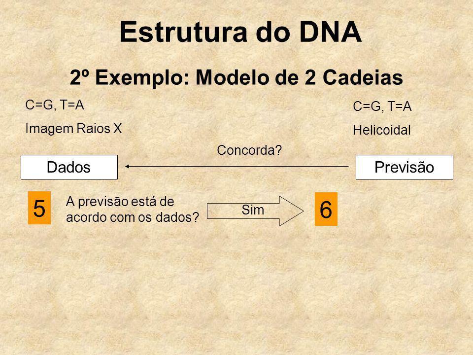 2º Exemplo: Modelo de 2 Cadeias