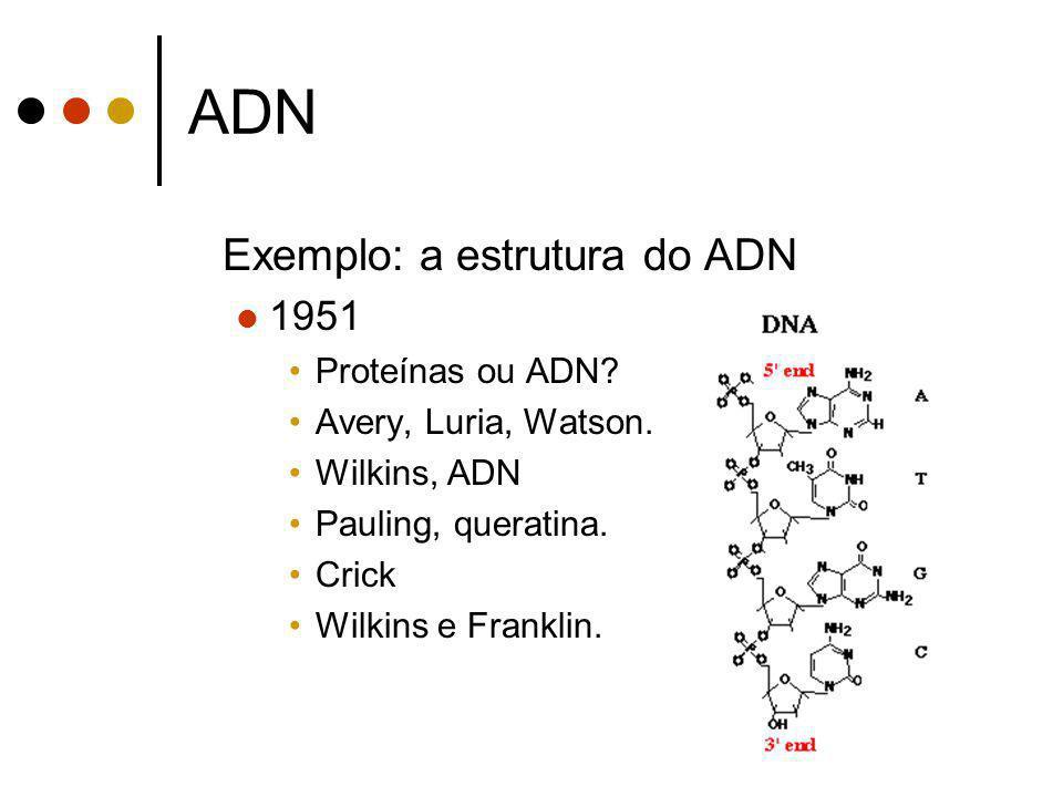 ADN Exemplo: a estrutura do ADN 1951 Proteínas ou ADN