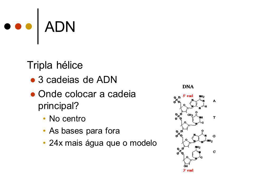 ADN Tripla hélice 3 cadeias de ADN Onde colocar a cadeia principal