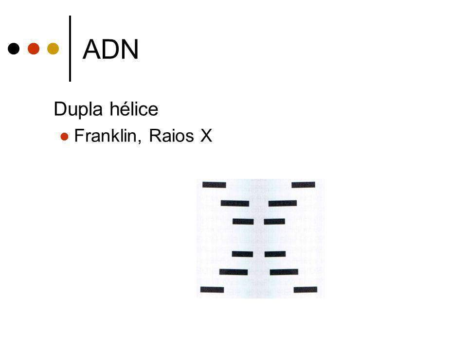 ADN Dupla hélice Franklin, Raios X