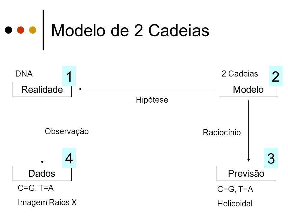 Modelo de 2 Cadeias 1 2 4 3 Realidade Modelo Dados Previsão DNA