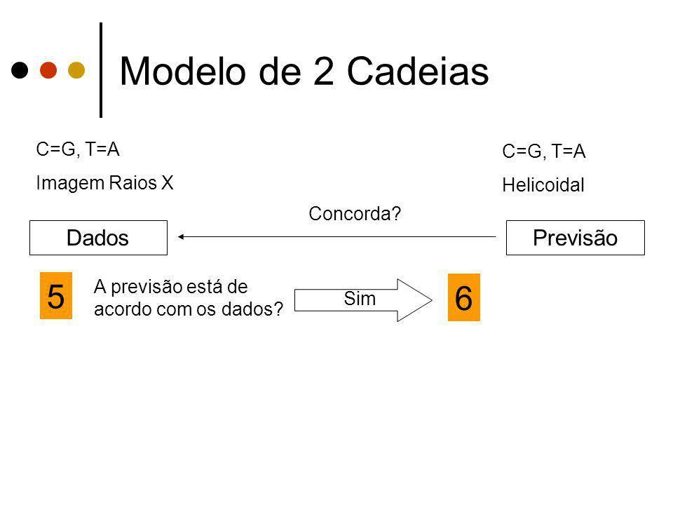 Modelo de 2 Cadeias 5 6 Dados Previsão C=G, T=A C=G, T=A