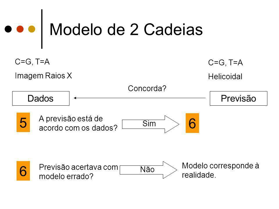 Modelo de 2 Cadeias 5 6 6 Dados Previsão C=G, T=A C=G, T=A