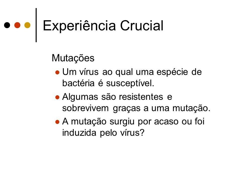 Experiência Crucial Mutações