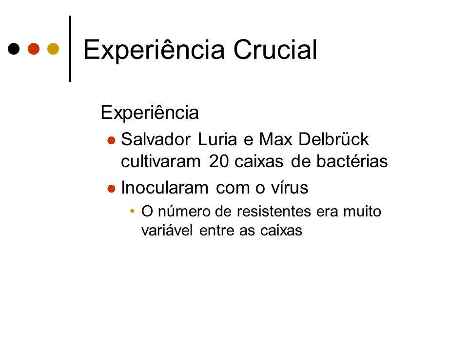 Experiência Crucial Experiência