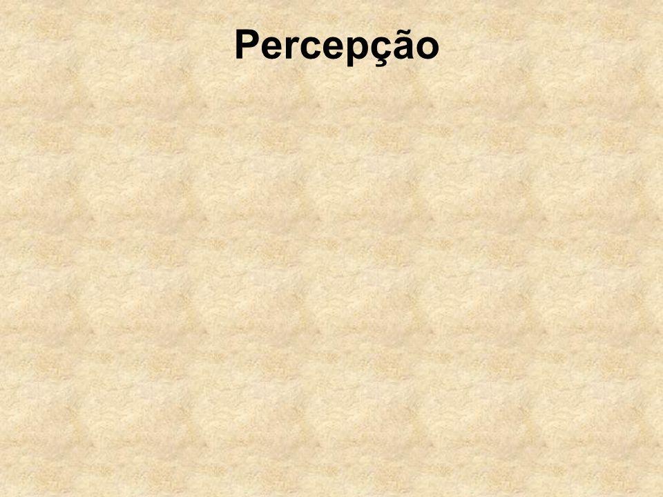 Percepção