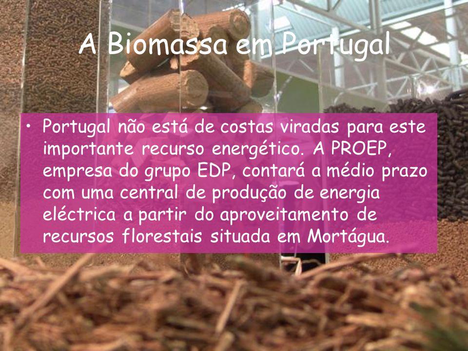 A Biomassa em Portugal