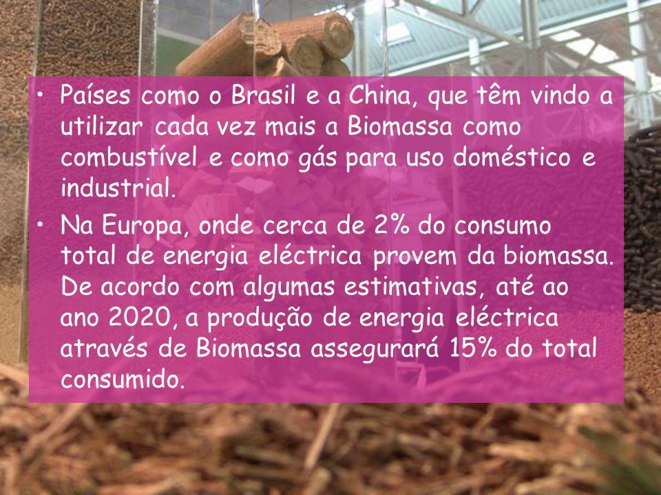 Países como o Brasil e a China, que têm vindo a utilizar cada vez mais a Biomassa como combustível e como gás para uso doméstico e industrial.