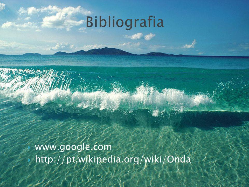 Bibliografia www.google.com http://pt.wikipedia.org/wiki/Onda