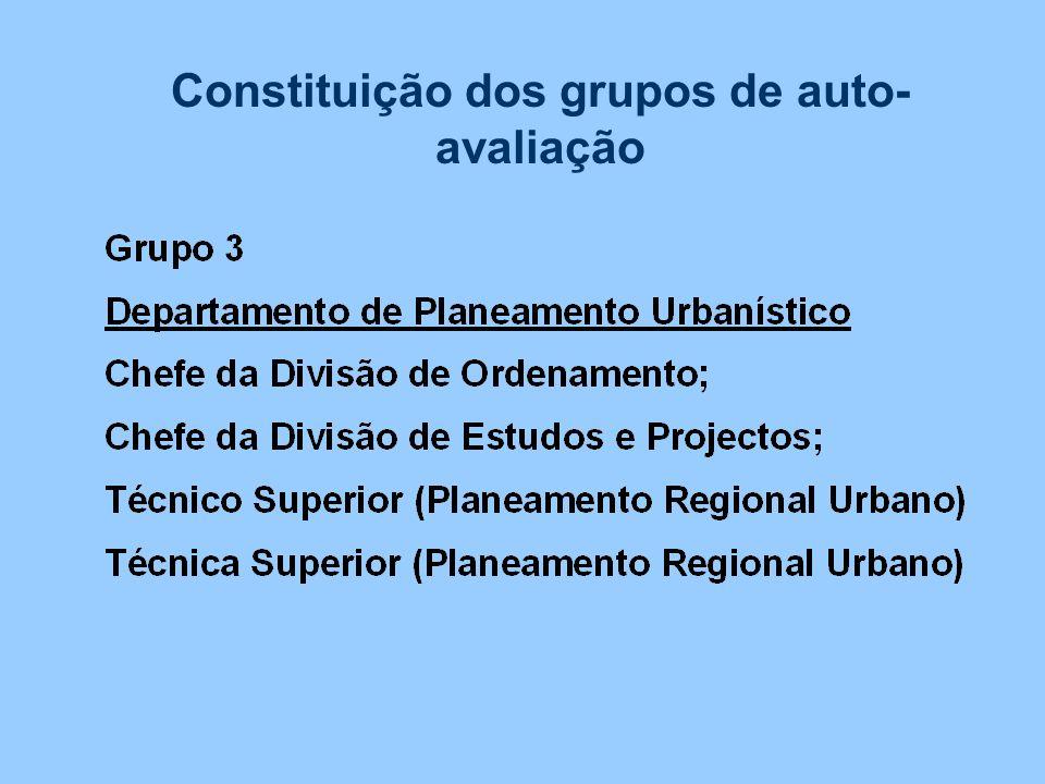 Constituição dos grupos de auto-avaliação