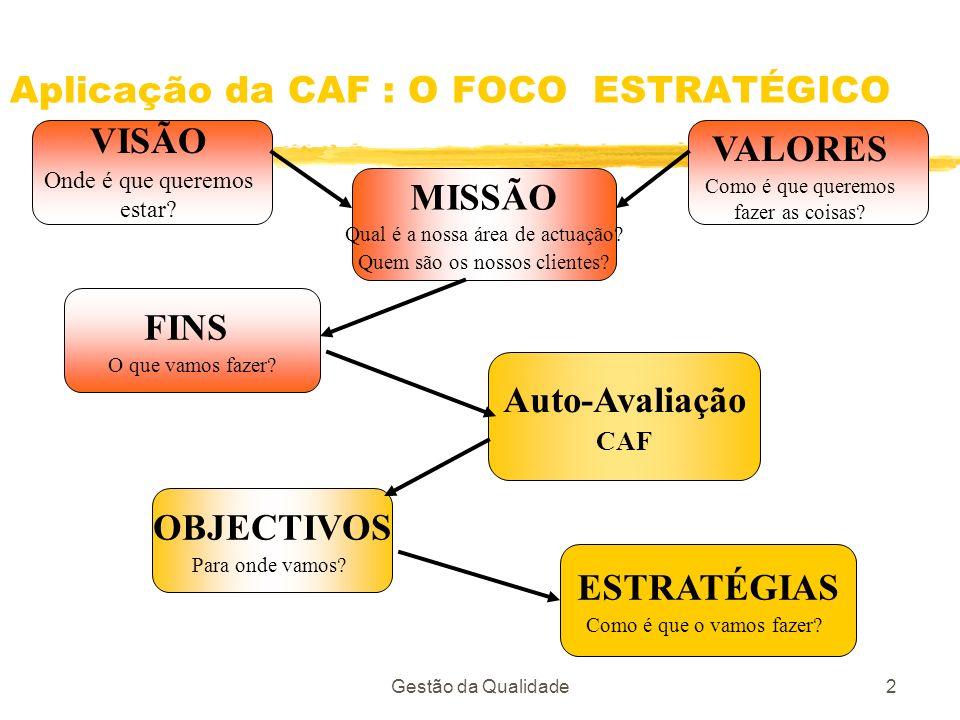 Aplicação da CAF : O FOCO ESTRATÉGICO