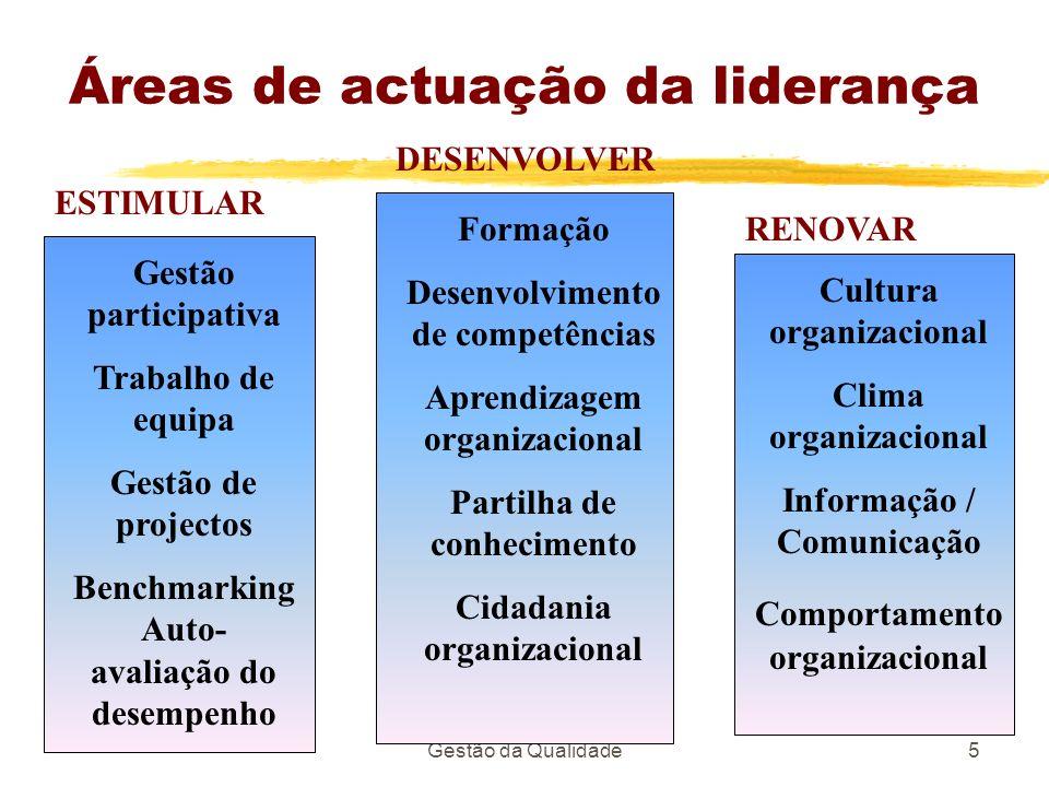 Áreas de actuação da liderança