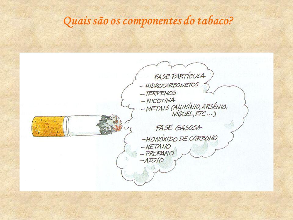 Quais são os componentes do tabaco