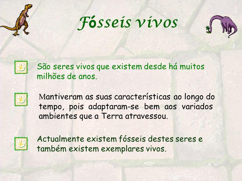 Fósseis vivos São seres vivos que existem desde há muitos milhões de anos.