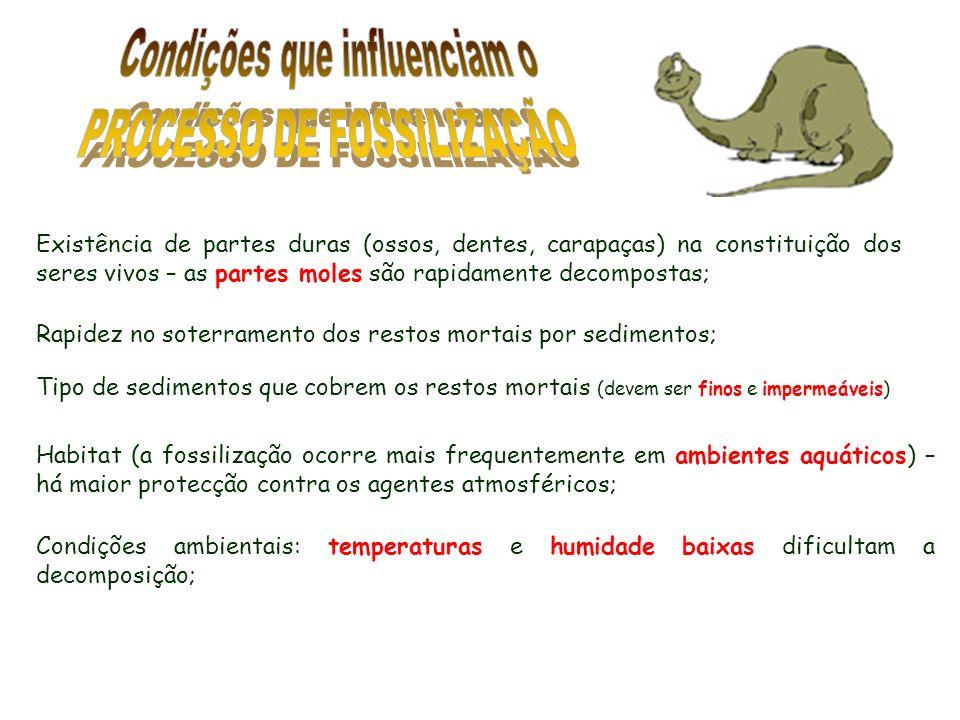 Condições que influenciam o PROCESSO DE FOSSILIZAÇÃO