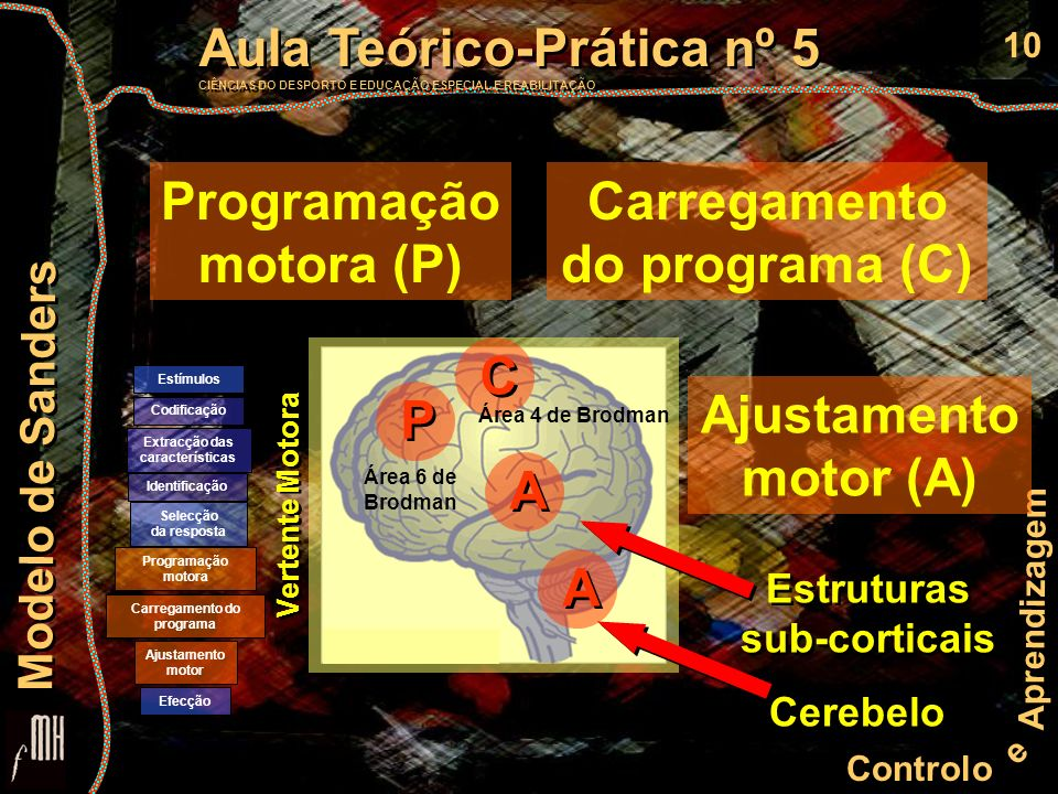 Programação motora (P) Carregamento do programa (C)