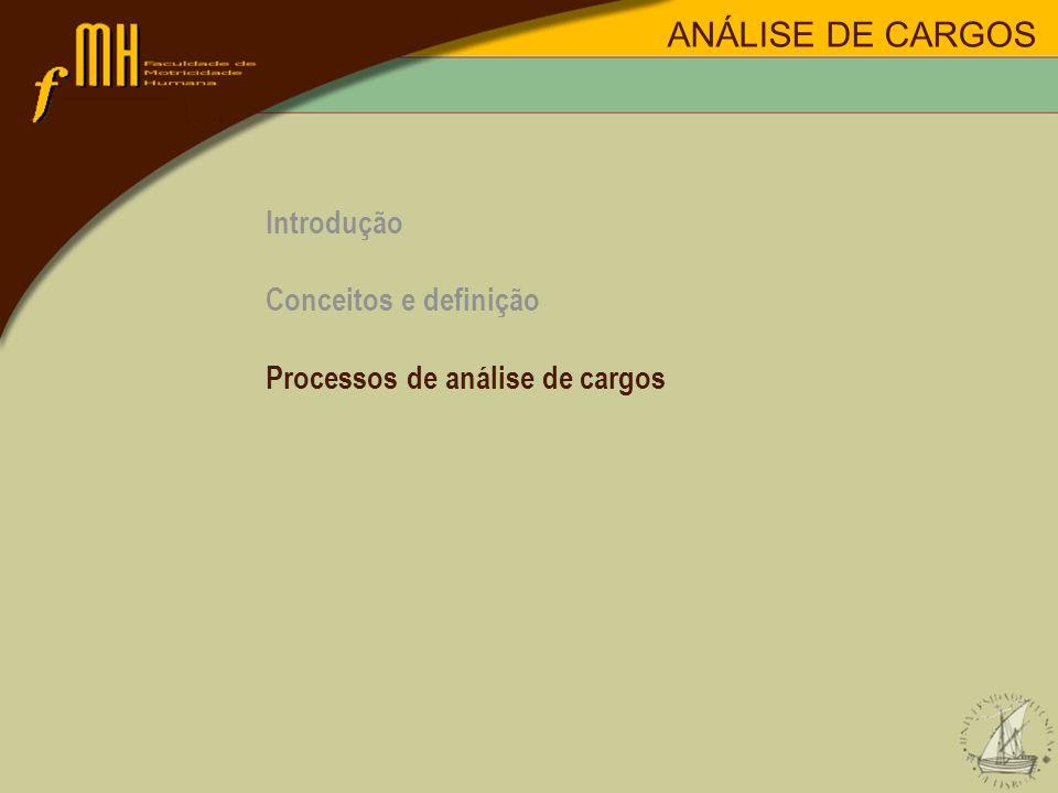 ANÁLISE DE CARGOS Introdução Conceitos e definição