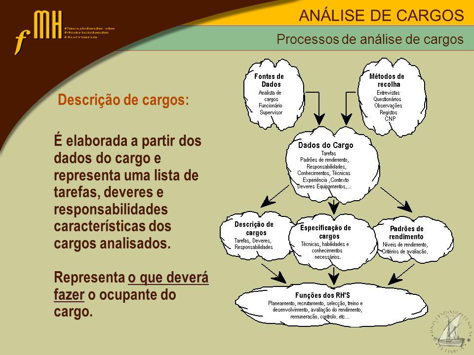 características dos cargos analisados.